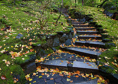 Autumn Photograph - Up The Winding Stairs by Don Schwartz