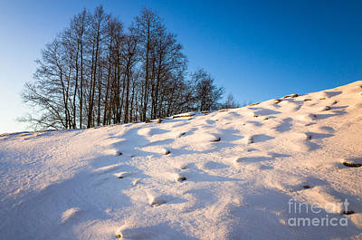 Photograph - Up To The Hill by Ismo Raisanen