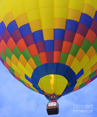 Photograph - Up Up And Away by Rachel Munoz Striggow