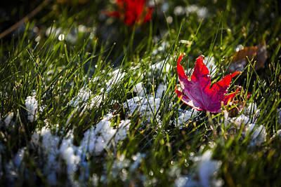 Upcoming Winter Original by Eduard Moldoveanu