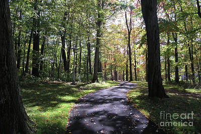 Photograph - Upj Campus Path by John Waclo