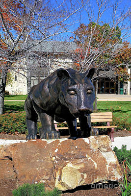 Photograph - Upj Panther by John Waclo