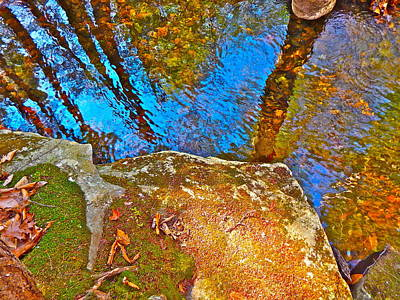 Upland Trail 2014 106 Art Print