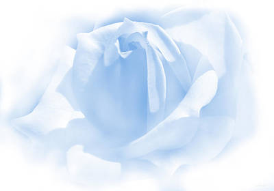 Photograph - Upon A Cloud Blue Rose Flower by Jennie Marie Schell