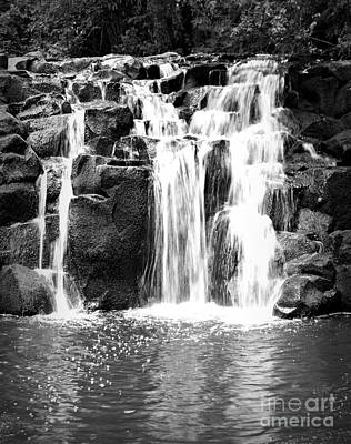 Photograph - Upper Beaver Falls Bw by Chalet Roome-Rigdon