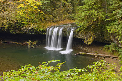 Hiking Photograph - Upper Butte Creek Falls Oregon 2 by David Gn