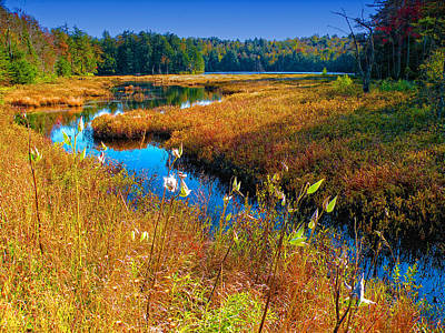 Photograph - Upper Cary Lake In The Adirondacks by David Patterson