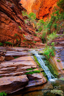 Grand Canyon Photograph - Upper Elves Chasm Cascade by Inge Johnsson