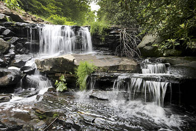 Upper Goose Creek Falls Art Print