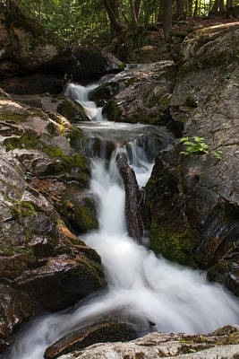 Upper Pup Creek Falls Art Print