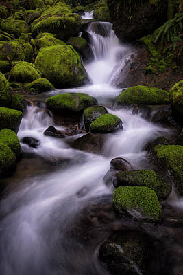 Photograph - Upper Ruckel Creek by Brian Bonham