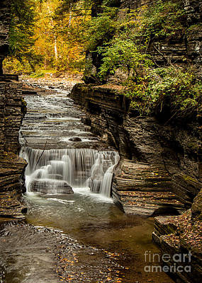 Photograph - Upper Treman by Brad Marzolf Photography