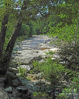 Photograph - Upper Waters Of Thge Swift River White Mt National Forest Nh by Lizi Beard-Ward
