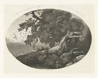 Uprooted Tree Trunk On The Coast, Pierre Louis Dubourcq Print by Pierre Louis Dubourcq