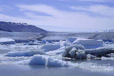 Photograph - Upsala Glacier Patagonia by Rudi Prott