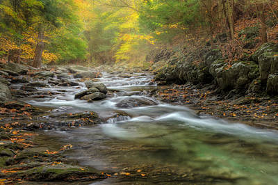 Autumn In New England Photograph - Upstream Fog by Bill Wakeley