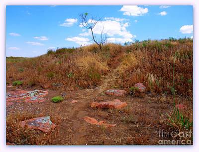 Tina Turner - Upward Trail by Mickey Harkins