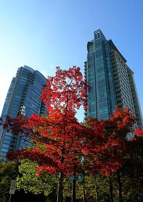 Photograph - Urban Autumn by Brian Chase