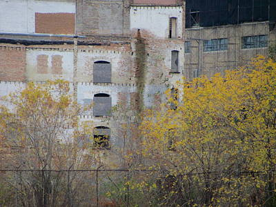 Photograph - Urban Decay Bricked Windows 3 by Anita Burgermeister