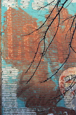 Photograph - Urban Decay Mural Wall 3 by Anita Burgermeister