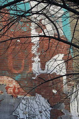 Photograph - Urban Decay Mural Wall 5 by Anita Burgermeister