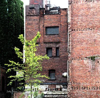 Photograph - Urban Decay by Sally Simon