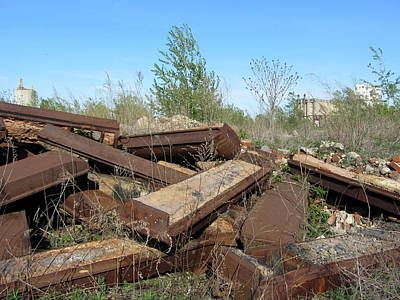 Photograph - Urban Decay Solvay Brick Ruins 3 by Anita Burgermeister