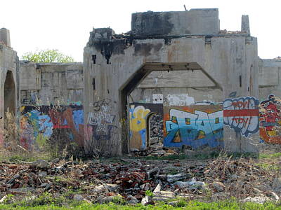 Photograph - Urban Decay Solvay Ruins 1 by Anita Burgermeister