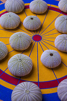 Urchins On Game Board Art Print by Garry Gay