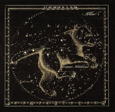 Ursa Major Constellation, 1829 Art Print