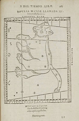 Ursa Major Star Constellation Print by British Library