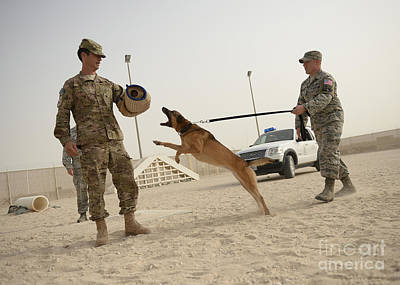 Attack Dog Photograph - U.s. Air Force Soldier Takes A Bite by Stocktrek Images
