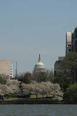 Cherry Photograph - Us Capitol - Cherry Blossoms - Washington Dc - 01131 by DC Photographer