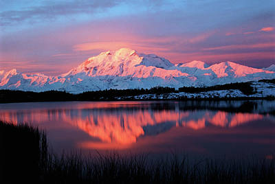 Usa, Alaska, Denali National Park Print by Hugh Rose