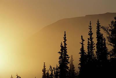 Reynolds Photograph - Usa, Alaska, Fog, Sunrise, Winter by Gerry Reynolds
