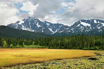 Bog Wall Art - Photograph - Usa, Alaska, Kenai Peninsula by Jaynes Gallery