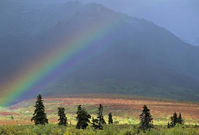 Usa, Alaska, Rainbow, Tundra, Fall Art Print by Gerry Reynolds