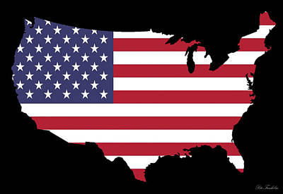 Usa And Flag Art Print by Pete Trenholm
