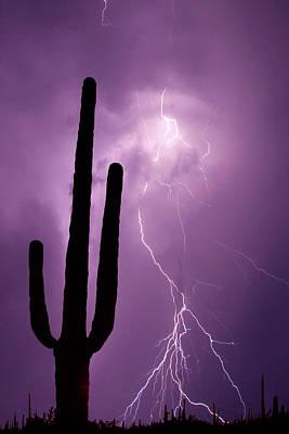 Arizona Lightning Photograph - Usa, Arizona Composite Of Saguaro by Jaynes Gallery