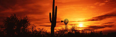 Usa, Arizona, Sonoran Desert, Sunset Art Print by Panoramic Images