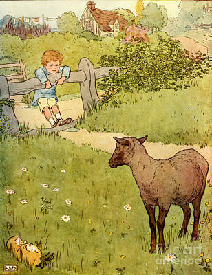 Childrens Books Drawing - Usa Baa Baa Black Sheep  Book Plate by The Advertising Archives