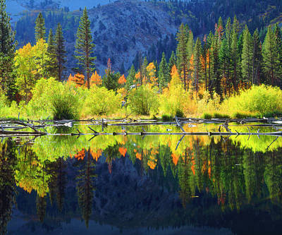 Beaver Pond Photograph - Usa, California, Fall Colors Reflecting by Jaynes Gallery