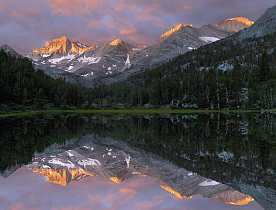 Usa, California Marsh Lake At Sunrise Art Print by Jaynes Gallery