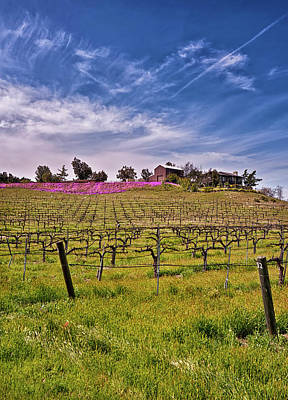 Temecula Photograph - Usa, California, Temecula by Richard Duval