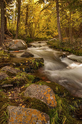Crestone Photograph - Usa, Colorado Autumn Colors On Crestone by Jaynes Gallery