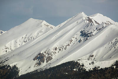 Sawatch Range Photograph - Usa, Colorado Fresh Spring Snow Coats by Jaynes Gallery