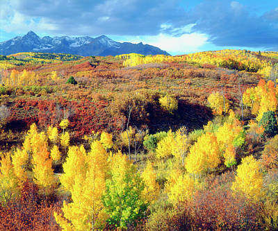 Usa, Colorado, Rocky Mountains, Autumn Art Print by Jaynes Gallery