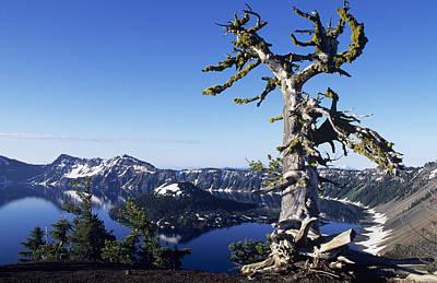 Tranquil Mountaintop Photograph - Usa, Crater Lake National Park Oregon by Greg Vaughn