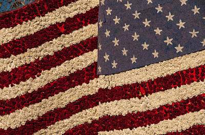 Photograph - Usa Flag Of Flowers by Connie Cooper-Edwards