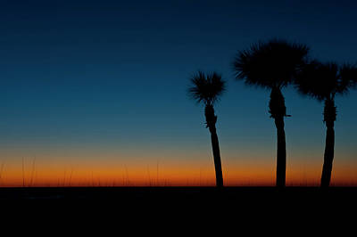 Large Format Photograph - Usa, Florida, Sarasota, Orange And Blue by Bernard Friel